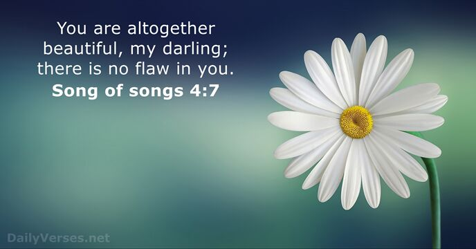 song-of-songs 4:7