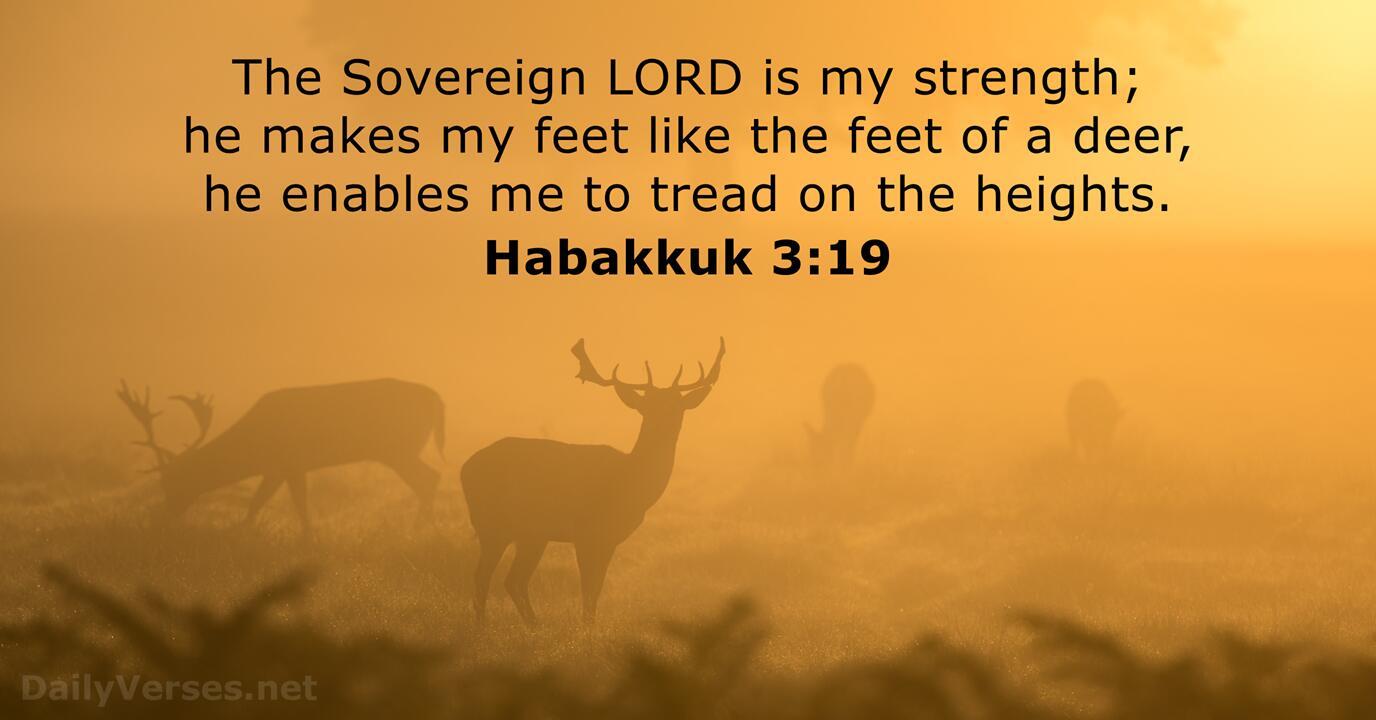 Habakkuk 3:19 - Bible verse of the day - DailyVerses.net