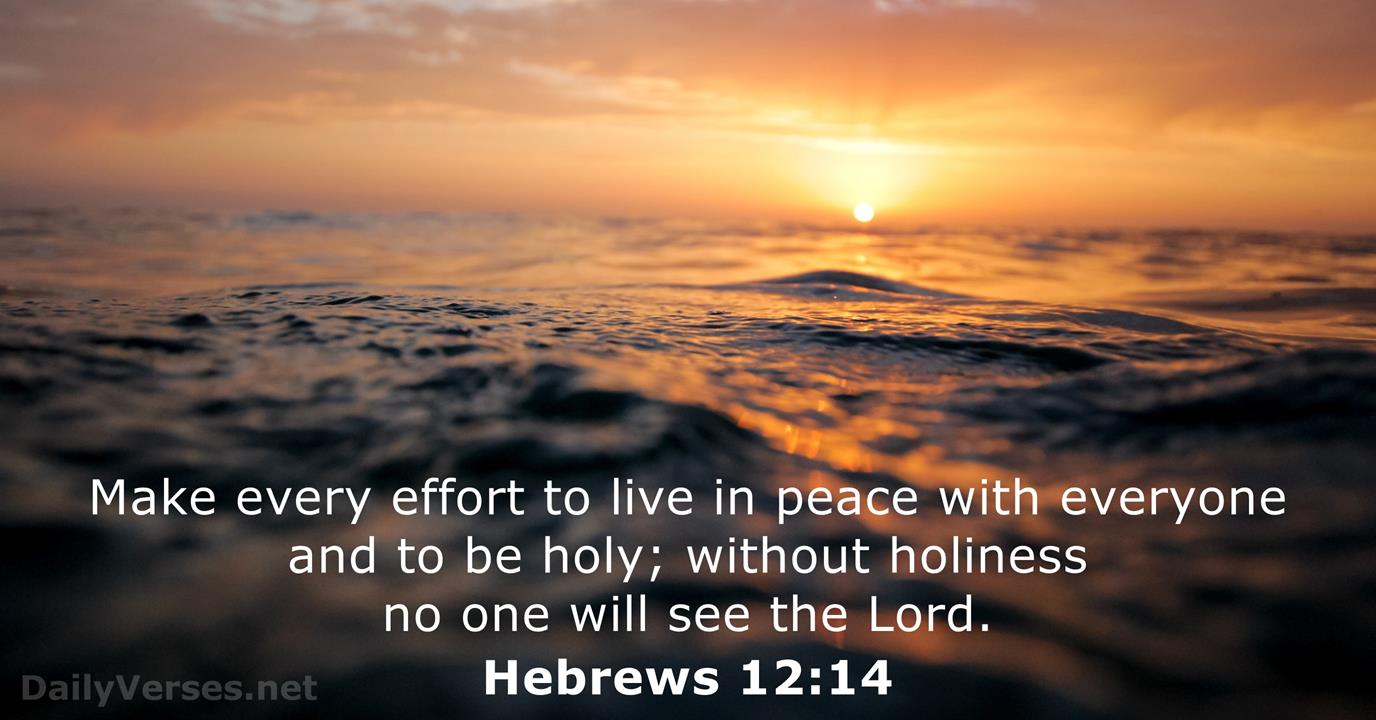 Hebrews 12:14 - Bible verse of the day - DailyVerses.net
