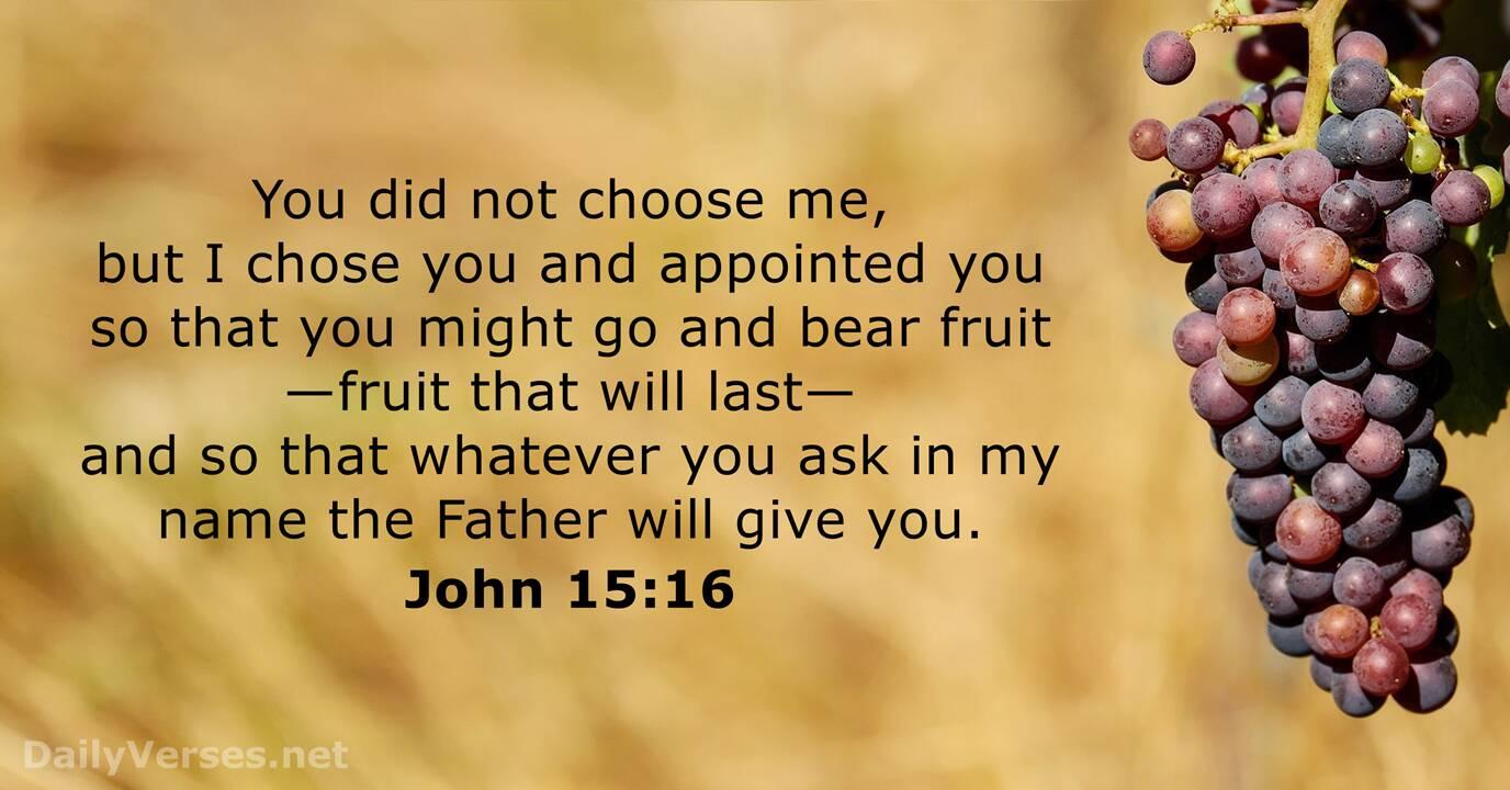 September 28, 2016 - Bible verse of the day - John 15:16
