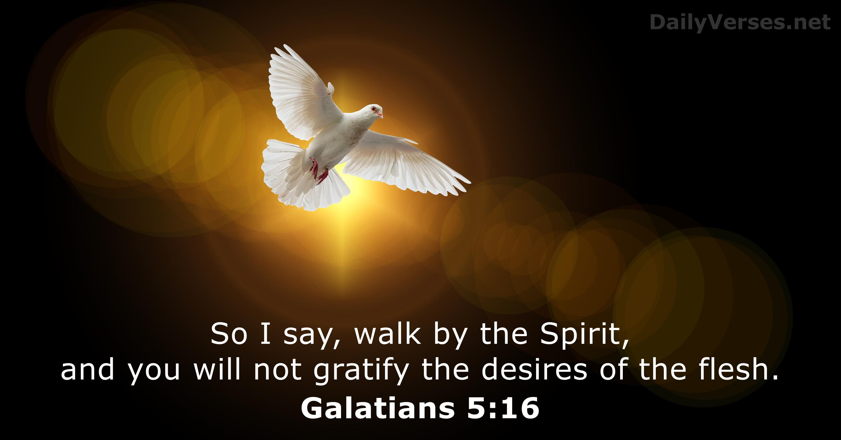 May 7, 2020 - Bible verse of the day - Galatians 5:16 ...