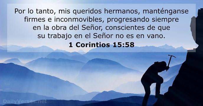 21 Versículos De La Biblia Sobre Servir Nvi Rvr60