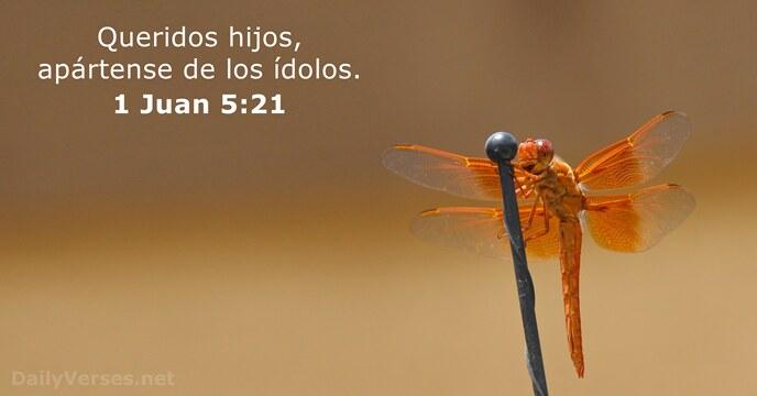 17 Versículos De La Biblia Sobre Los ídolos Dailyverses Net