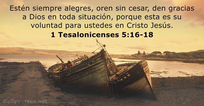 15 Versículos De La Biblia Sobre La Gratitud Dailyversesnet