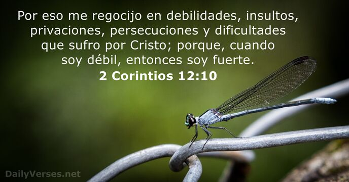 38 Versículos De La Biblia Sobre La Fuerza Dailyverses Net