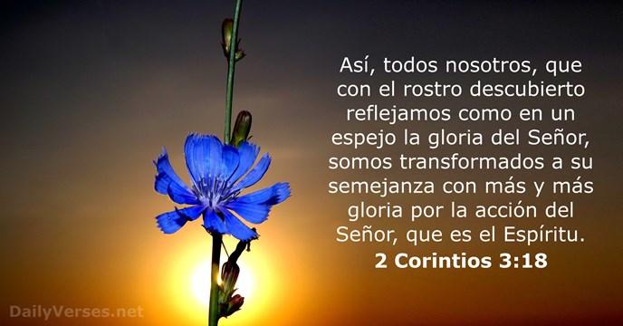13 Versículos De La Biblia Sobre La Transformación