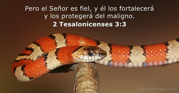 Matrimonio Biblia Versiculos Reina Valera : 24 versículos de la biblia sobre la seguridad dailyverses.net