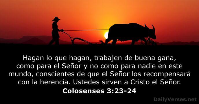 25 Versículos De La Biblia Sobre El Trabajo Dailyverses Net