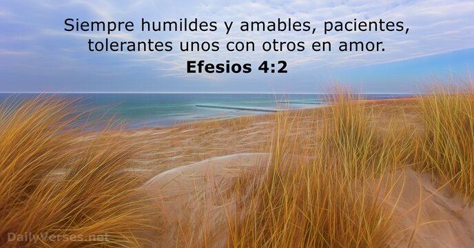 41 Versículos De La Biblia Sobre La Humildad Dailyversesnet