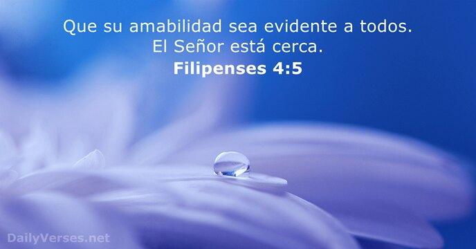 12 Versículos De La Biblia Sobre La Amabilidad Dailyversesnet