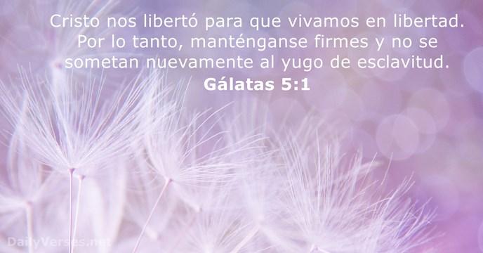 19 Versículos De La Biblia Sobre La Libertad Dailyversesnet