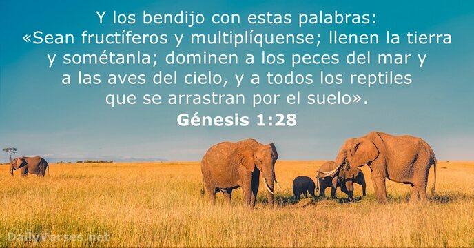 Génesis 1:28 - Versículo de la Biblia del día
