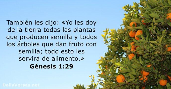 Génesis 1:29 - Versículo de la Biblia del día