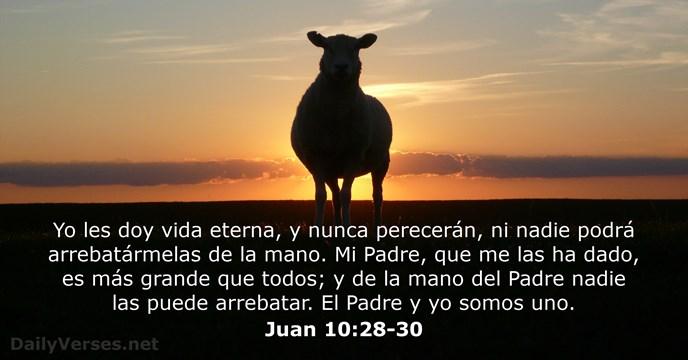 Resultado de imagen para Juan 10,29-30