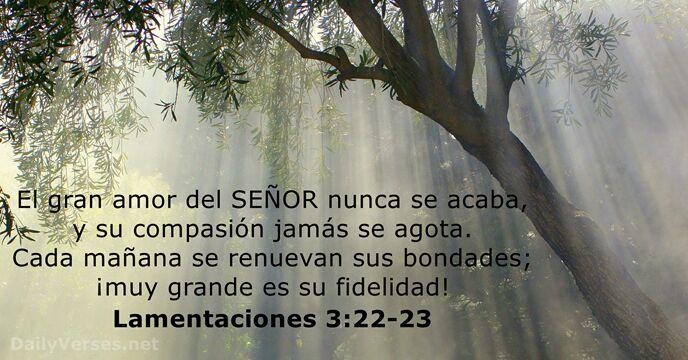 Lamentaciones 3 22 23 Rvr60 Versículo De La Biblia Del