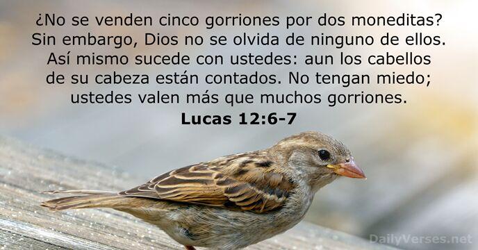Lucas 12:6-7