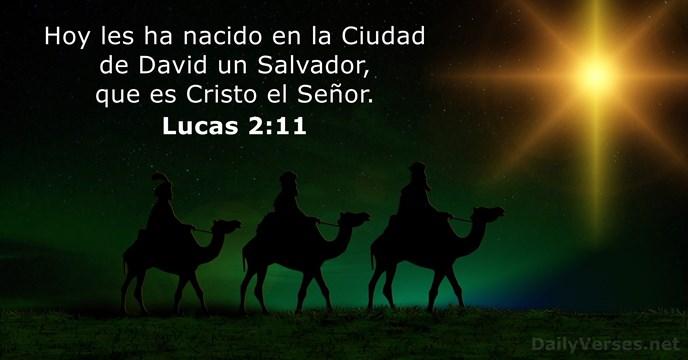 Frases Biblia Navidad.10 Versiculos De La Biblia Sobre La Navidad Dailyverses Net