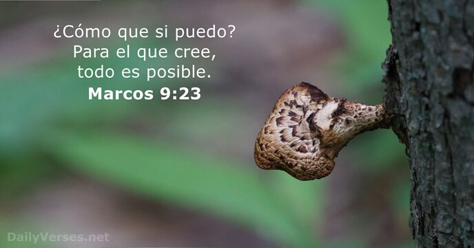 Marcos 9:23