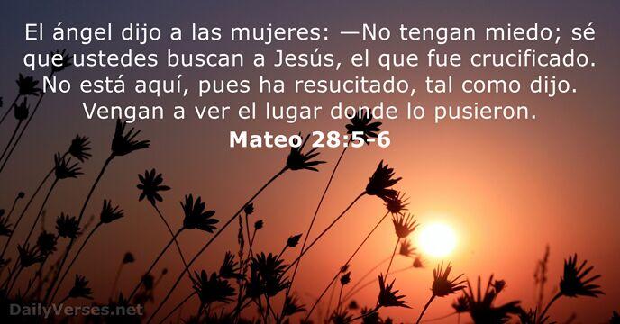 13 Versículos De La Biblia Sobre La Pascua Dailyversesnet