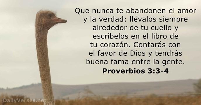 Proverbios 3:3-4 - Versículo de la Biblia del día