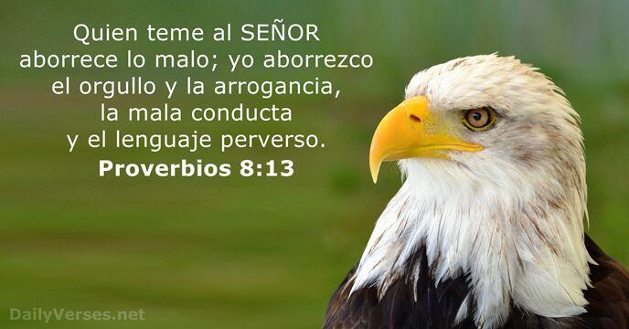 22 Versículos De La Biblia Sobre El Temor Dailyversesnet