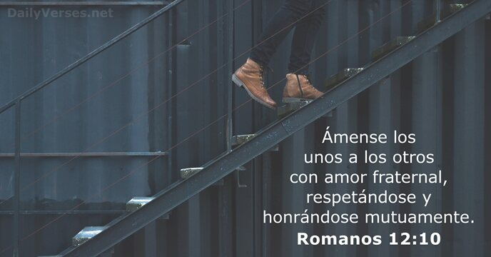 Romanos 12 10 Rvr60 Vers 237 Culo De La Biblia Del D 237 A