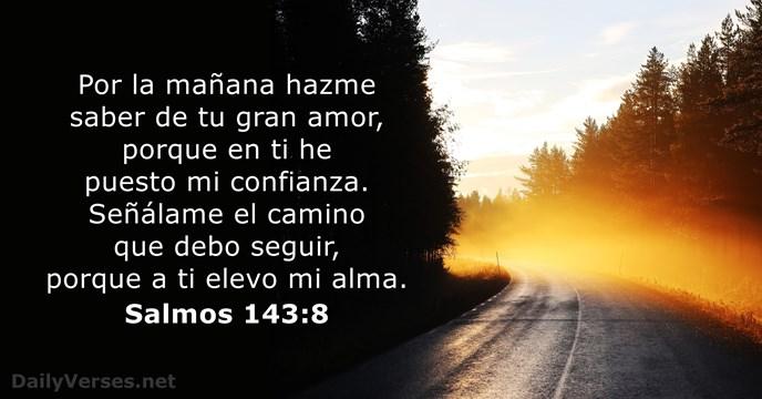 Salmos 143 8 Versículo De La Biblia Del Día Dailyverses Net