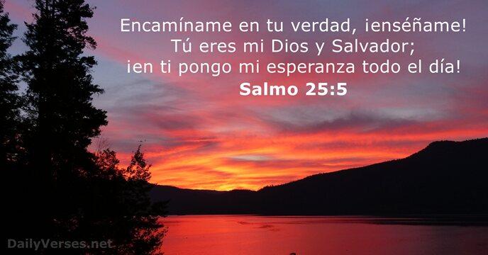 29 Versículos De La Biblia Sobre La Esperanza Dailyverses Net