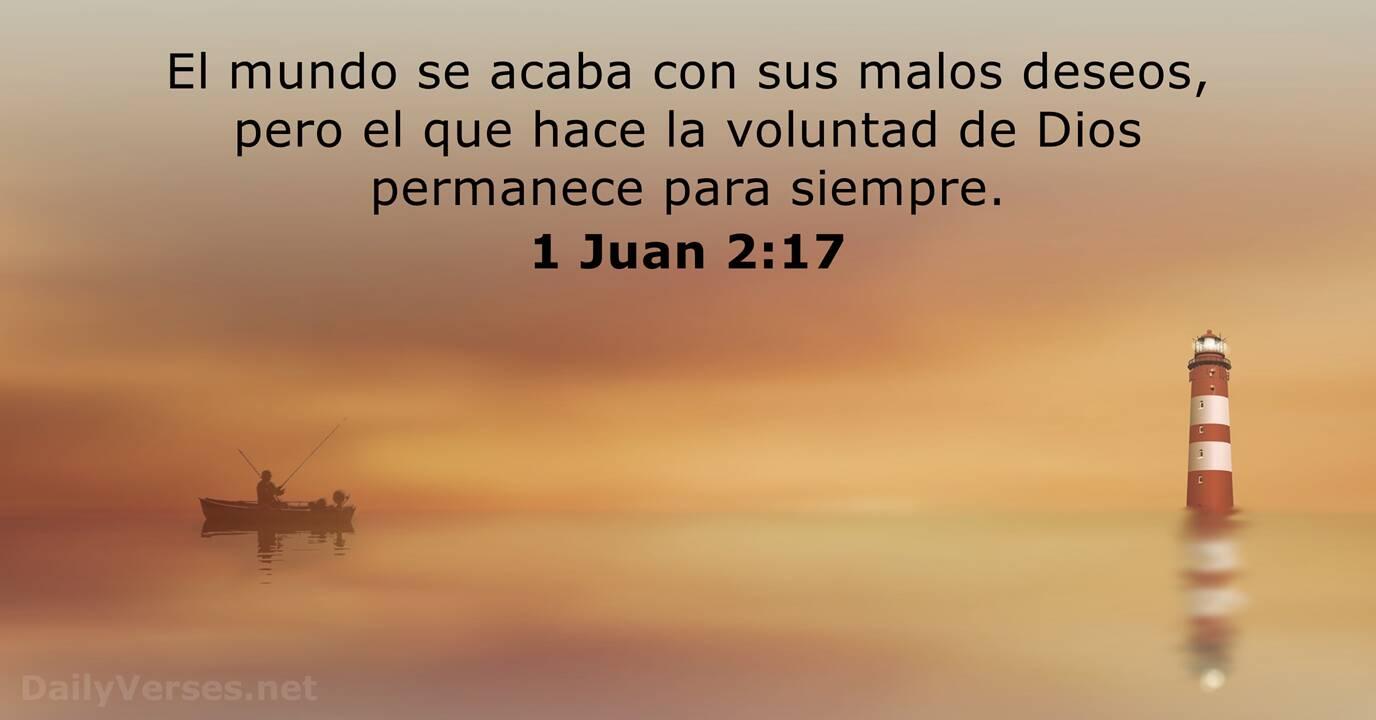 1 Juan 2 17 Versículo De La Biblia Dailyverses Net