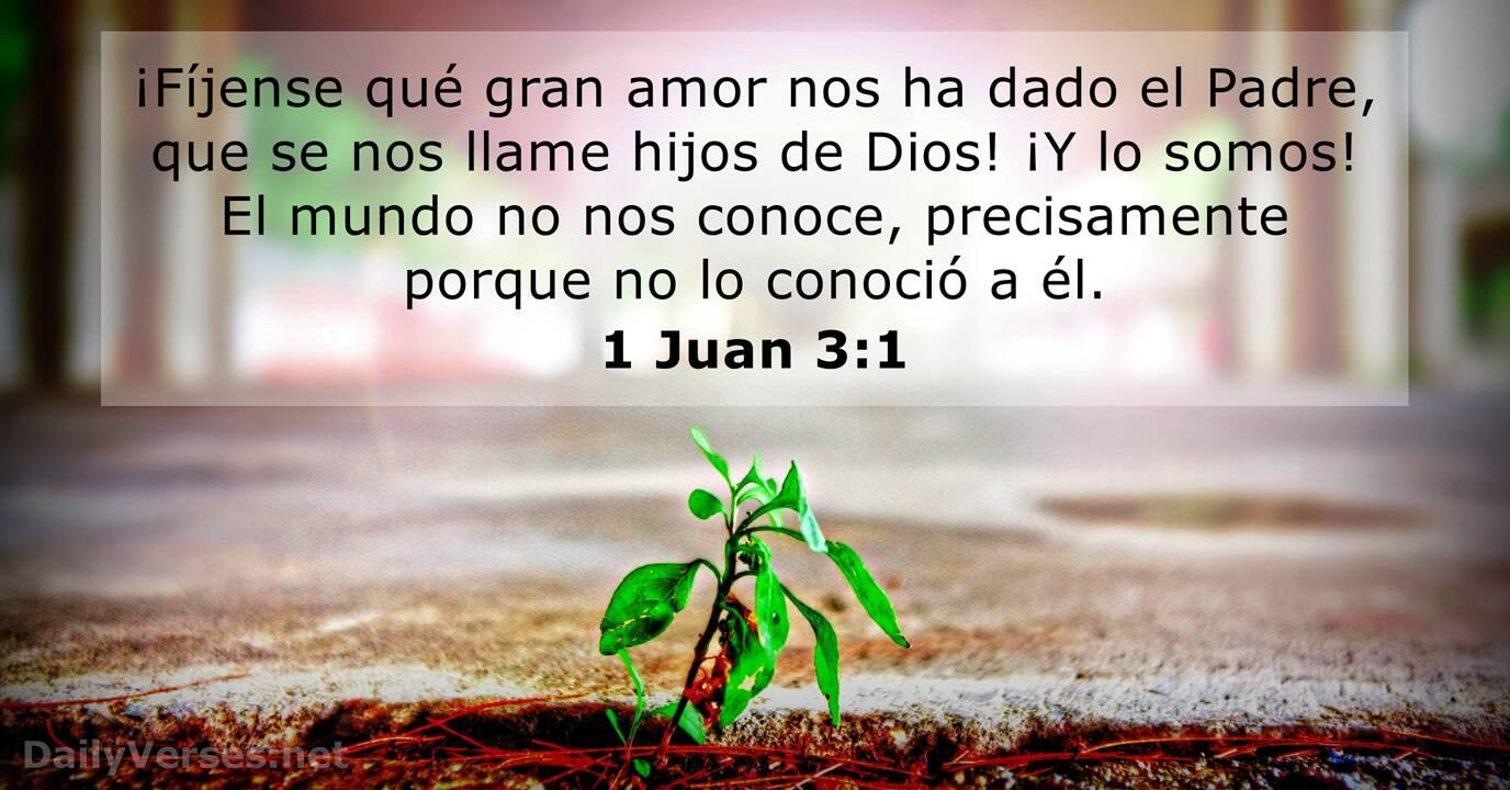 1 Juan 3:1 - Versículo de la Biblia del día - DailyVerses.net
