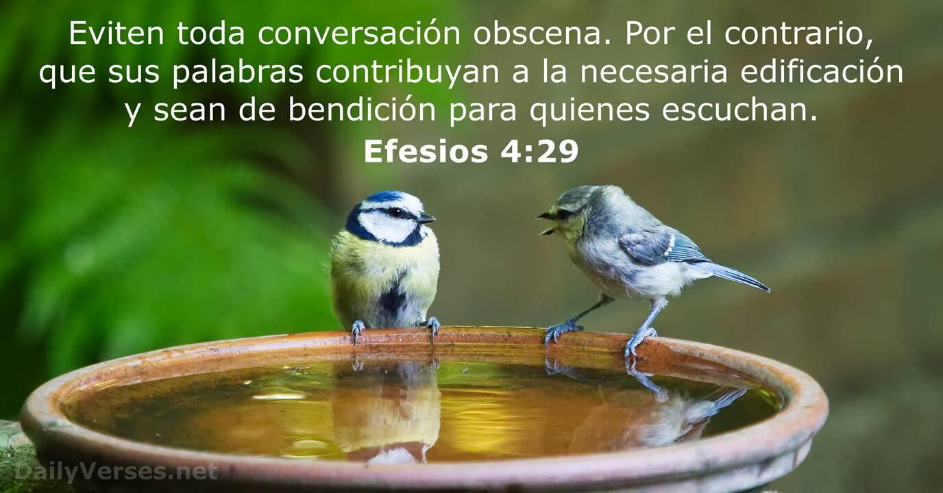 Efesios 4:29 - RVR60 - Versículo de la Biblia del día - DailyVerses.net