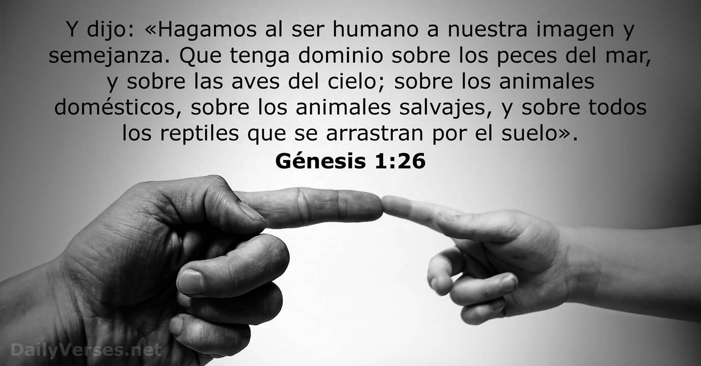 Génesis 1:26 - Versículo de la Biblia - DailyVerses.net