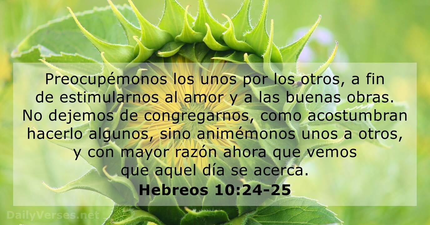 Versiculos Catolicos De La Biblia De Animo: 23 Versículos De La Biblia Sobre La Comunidad