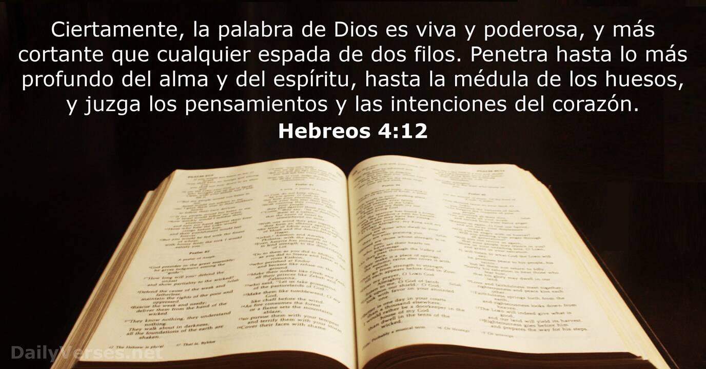 52 Versículos De La Biblia Sobre La Palabra De Dios Dailyverses Net
