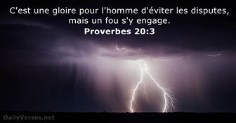 Proverbes 20:3