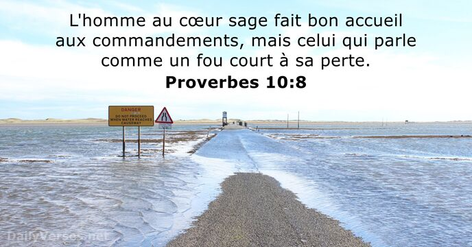 Proverbes 10:8