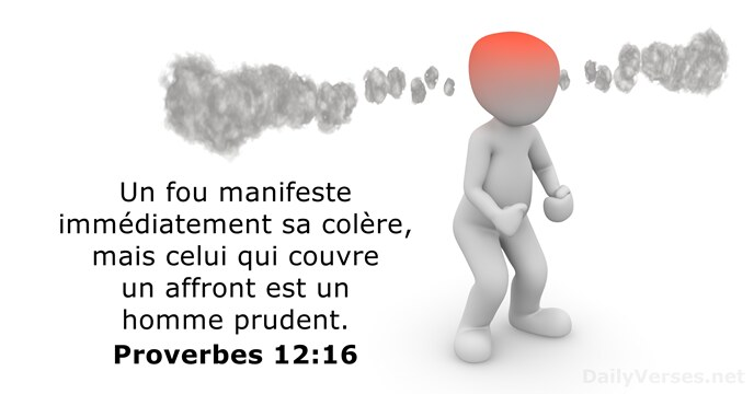 Proverbes 12:16