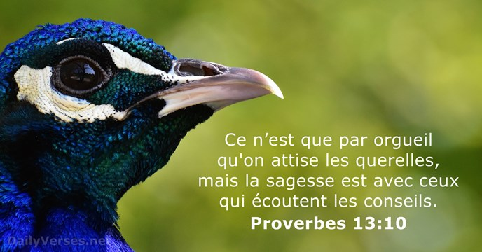 Proverbes 13:10