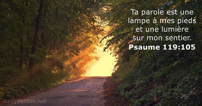 Psaumes 119:105
