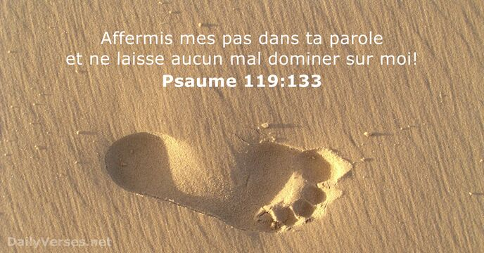Psaumes 119:133