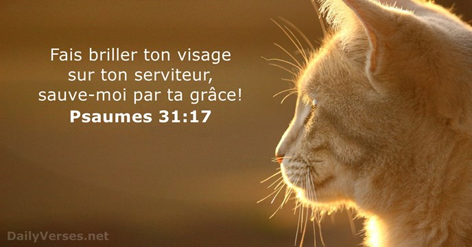 Psaumes 31:17