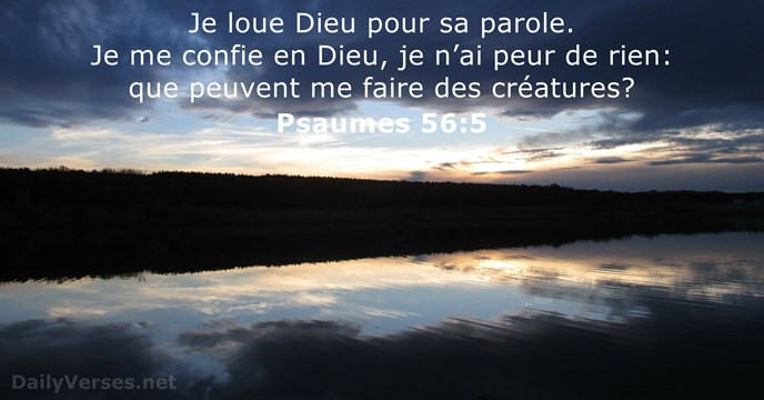 Psaumes 56:5