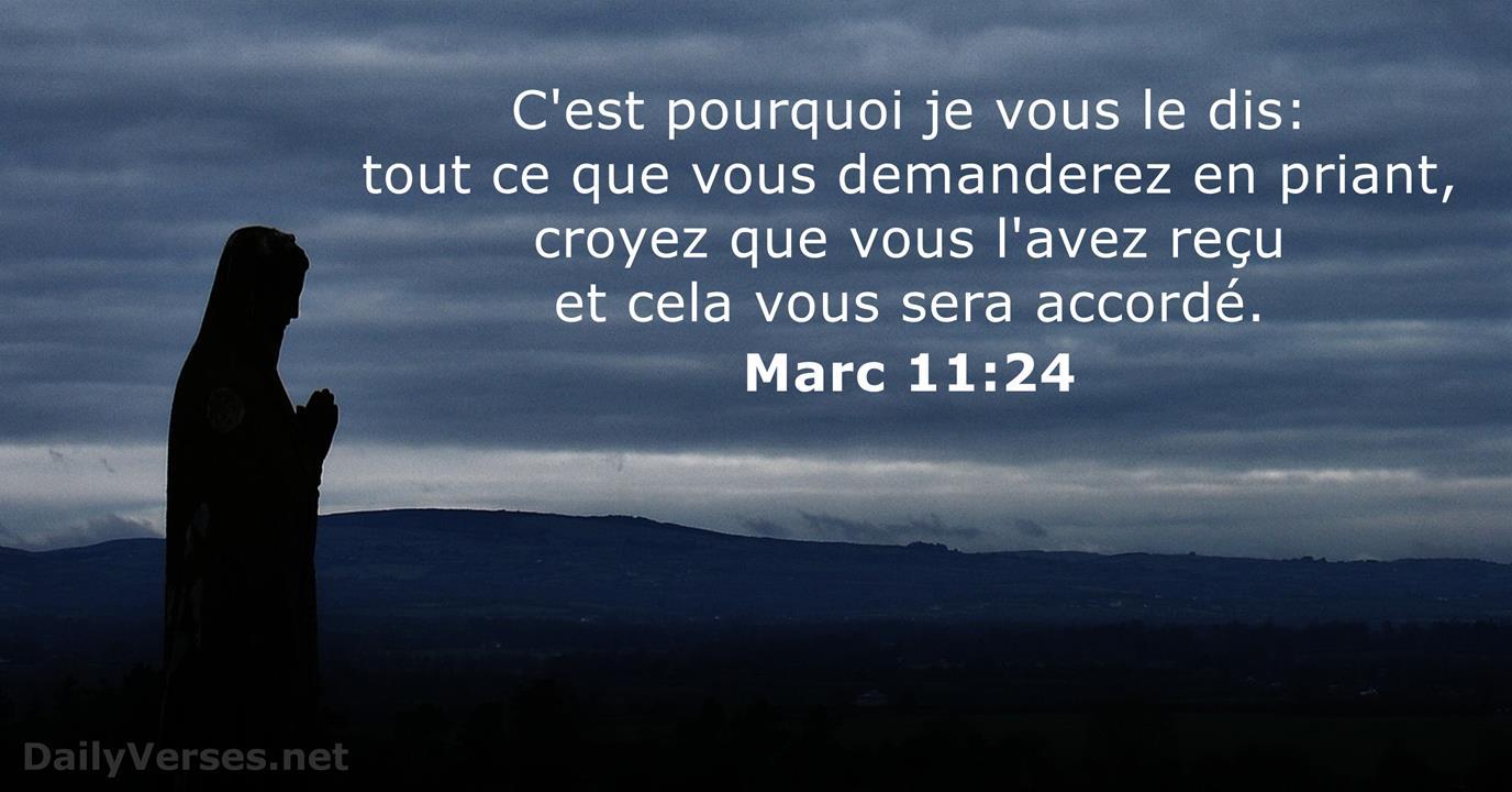 79 Versets Biblique sur la Foi - DailyVerses.net