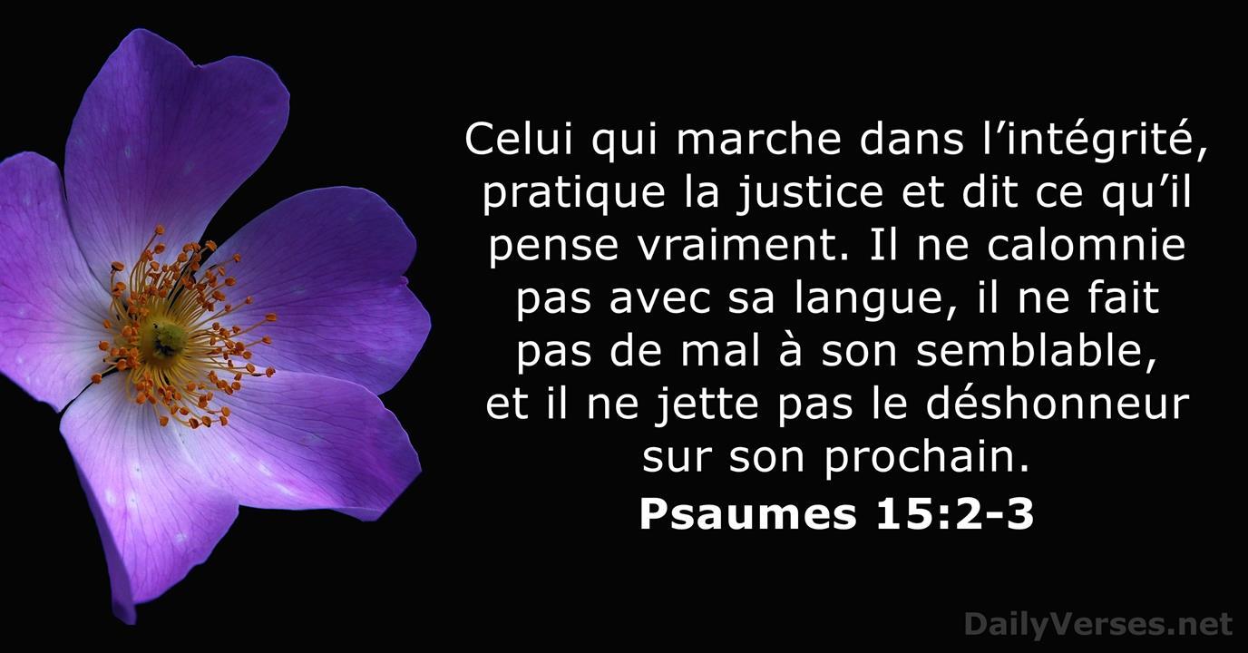 Psaume 15:2-3 - Verset Biblique du Jour - DailyVerses.net