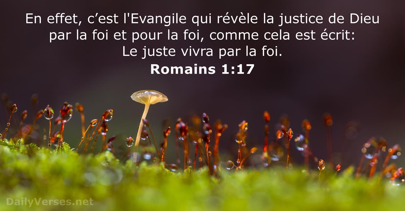 Romains 1:17 - Verset de la Bible - DailyVerses.net