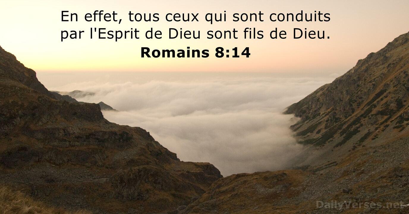 Romains 8:14 - Verset Biblique du Jour - DailyVerses.net