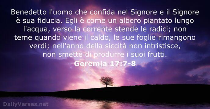 Frasi Della Bibbia Sulla Vita.54 Versetti Della Bibbia Sulla Fiducia Dailyverses Net