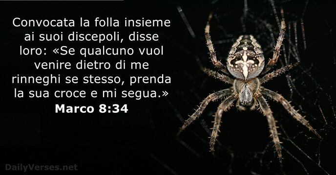 Marco 8:34