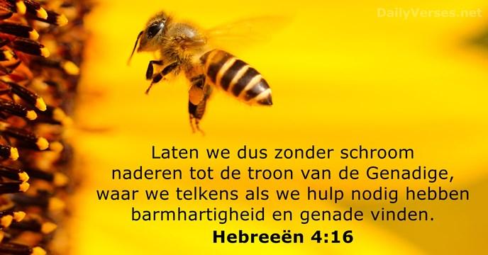 Laten we dus zonder schroom naderen tot de troon van de Genadige… Hebreeën 4:16
