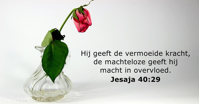 Jesaja 40:29 - Bijbeltekst van de dag - DailyVerses.net